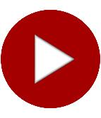 Video: Feldhase Lissy